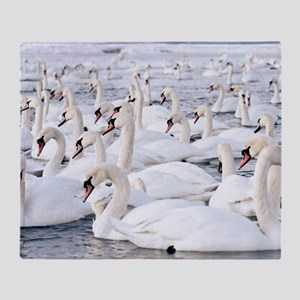 Lot of swans looking for food Throw Blanket