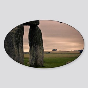 Picture of bird flying past Stonehe Sticker (Oval)