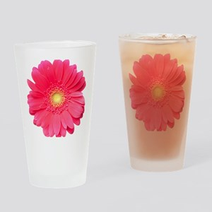 Pink gerbera daisy isolated on whit Drinking Glass