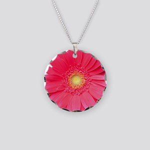 Pink gerbera daisy isolated  Necklace Circle Charm