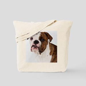 Portrait of cute bulldog pup Tote Bag