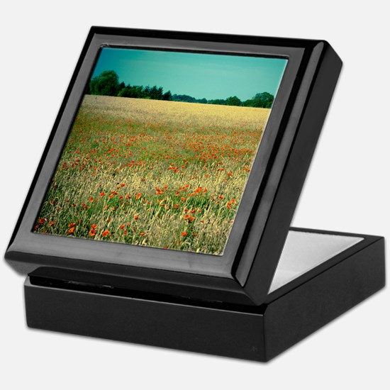 Poppy field. Keepsake Box