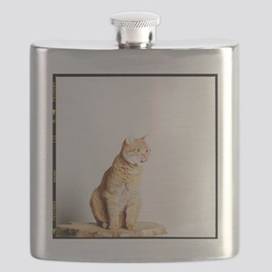 Red tomcat sitting on a wooden table and sti Flask