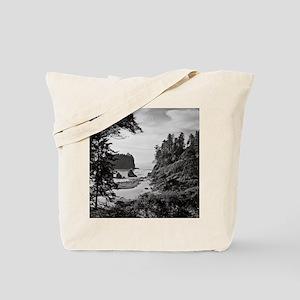 Ruby Beach, Olympic National Park, Washin Tote Bag