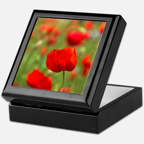 Red poppies in cornfield, France Keepsake Box