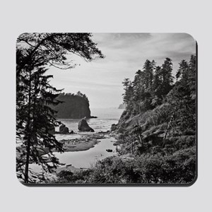 Ruby Beach, Olympic National Park, Washi Mousepad