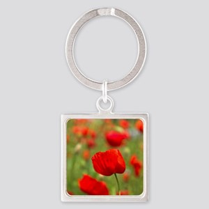 Red poppies in cornfield, France Square Keychain