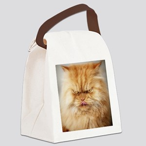 Persian cat looking angrily into  Canvas Lunch Bag
