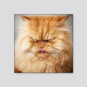 """Persian cat looking angrily Square Sticker 3"""" x 3"""""""