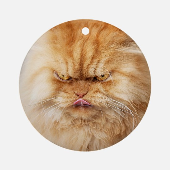Persian cat looking angrily into ca Round Ornament