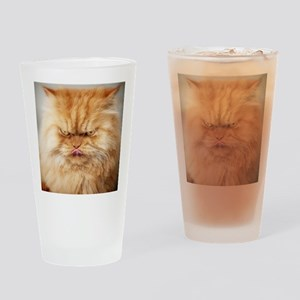 Persian cat looking angrily into ca Drinking Glass