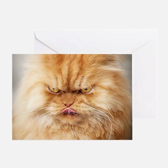 Persian cat looking angrily into cam Greeting Card