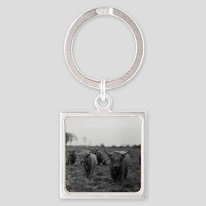 Scottish highland cattle on field, Square Keychain