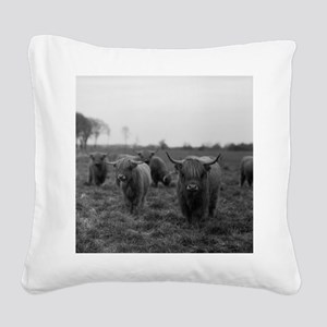 Scottish highland cattle on f Square Canvas Pillow
