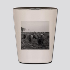 Scottish highland cattle on field, Nort Shot Glass