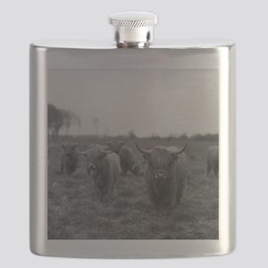 Scottish highland cattle on field, Northern Flask
