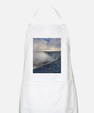 Seagull flying over misty Horseshoe Falls in Apron