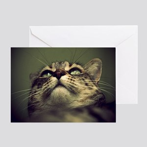 Portrait of a tabby cat. Greeting Card