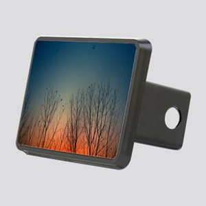 Sunset behind trees with b Rectangular Hitch Cover