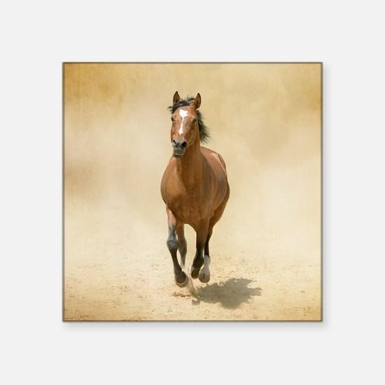 "Shagya-Arabian horse canter Square Sticker 3"" x 3"""