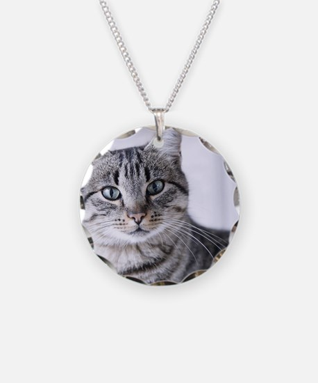 Tabby gray cat and green eye Necklace