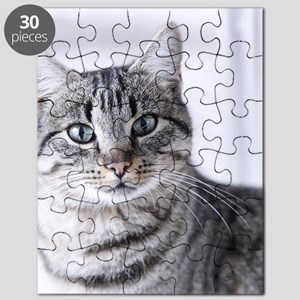 Tabby gray cat and green eyes. Puzzle