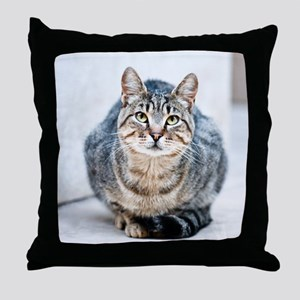 Street cat. Throw Pillow