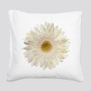 White gerbera daisy isolated  Square Canvas Pillow