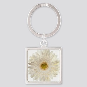 White gerbera daisy isolated on wh Square Keychain