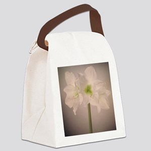 White amaryllis flowers on dark b Canvas Lunch Bag