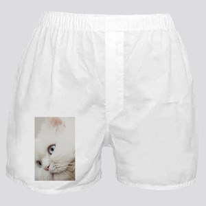 White long hair cat. Boxer Shorts