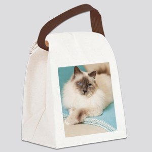 White sacred birman cat with blue Canvas Lunch Bag