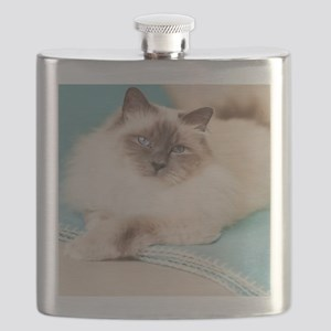 White sacred birman cat with blue eyes lying Flask