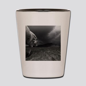 White horse at night in landscape. Shot Glass