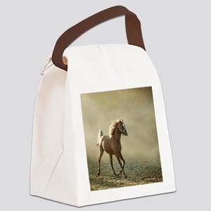 Young Arabian horse trotting, bac Canvas Lunch Bag