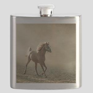 Young Arabian horse trotting, back lighting. Flask