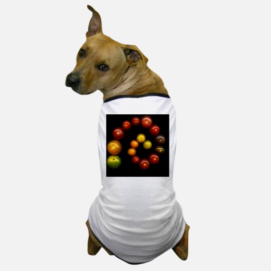 Tomatoes in a spiral Dog T-Shirt