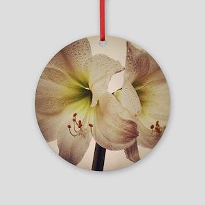 Vintage toned image of amaryllis fl Round Ornament
