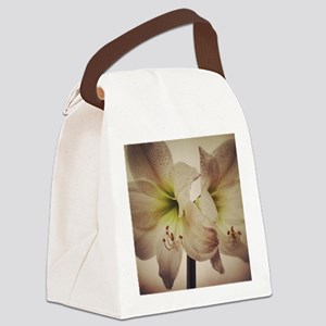 Vintage toned image of amaryllis  Canvas Lunch Bag
