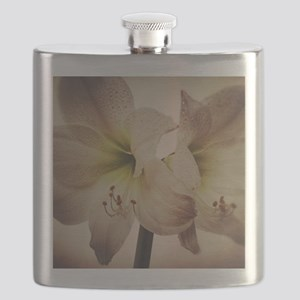 Vintage toned image of amaryllis flowers. Flask