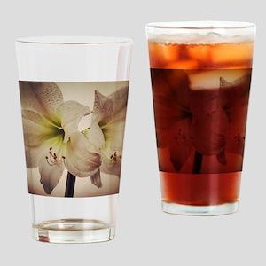 Vintage toned image of amaryllis fl Drinking Glass