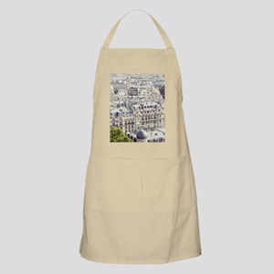 View of roofs of Paris. Apron