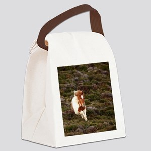 Young pony running downhill throu Canvas Lunch Bag