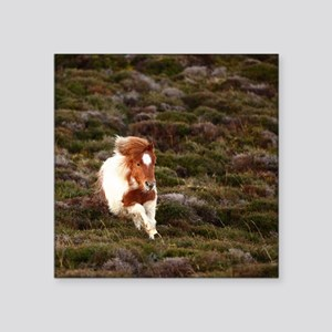 "Young pony running downhill Square Sticker 3"" x 3"""