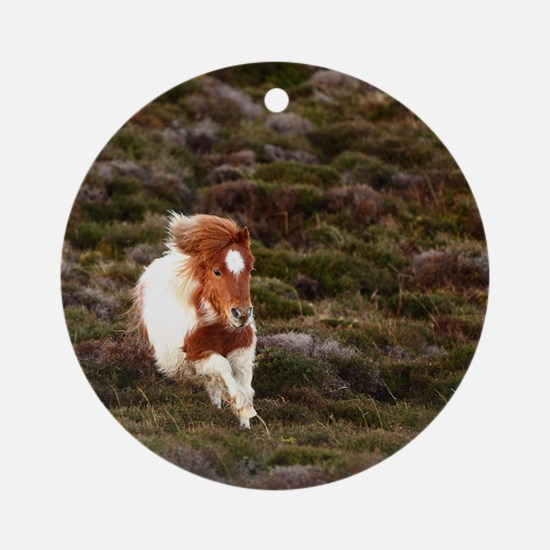Young pony running downhill through Round Ornament
