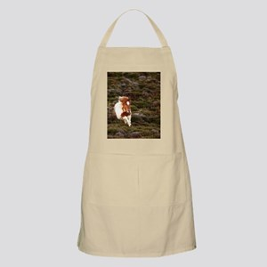 Young pony running downhill through heather. Apron