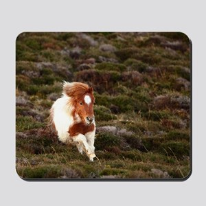 Young pony running downhill through heat Mousepad
