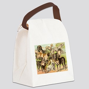 croppped2 Canvas Lunch Bag