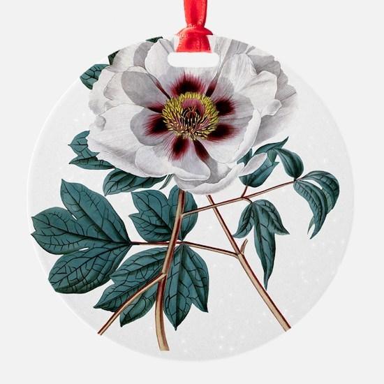 Vintage Peony Ornament