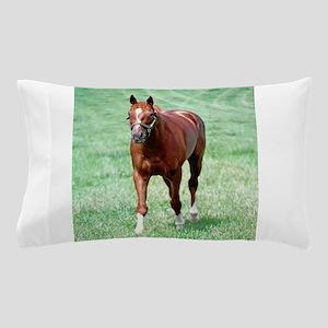 CHARISMATIC Pillow Case